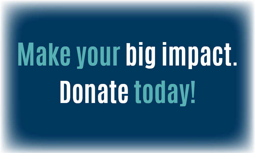 Make your big impact. Donate Today!